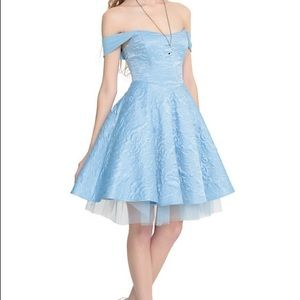 Limited Edition Cinderella Ball Gown